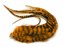 6 Pieces - Gold Thick Long Grizzly Rooster Hair Extension Feathers