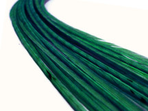 10 Pieces - Solid Peacock Green Thin Long Rooster Hair Extension Feathers