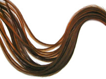 6 Pieces - Xl Solid Brown Thin Rooster Hair Extension Feathers