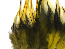 1 Dozen - Short Yellow Badger Rooster Hair Extension Feathers
