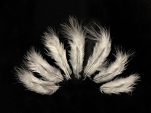 1 Dozen - Solid Ivory Rooster Fluff Chickabou Feathers