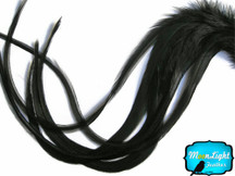 6 Pieces - XL Solid Black Thick Extra Long Rooster Hair Extension Feathers