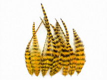 1 Dozen - Short Yellow Grizzly Rooster Feathers