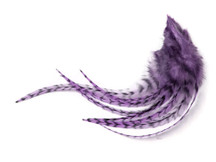 1 Dozen - Medium Lavender Grizzly Rooster Hair Extension Feathers