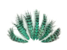 1 Dozen - Mint Green Grizzly Rooster Chickabou Fluff Feathers