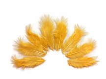 1 Dozen - Solid Tangerine Rooster Fluff Feathers