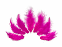 1 Dozen - Solid Hot Pink Rooster Fluff Chickabou Feathers