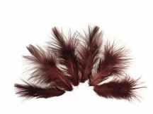 1 Dozen - Solid Brown Rooster Fluff Feathers
