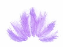 1 Dozen - Solid Lavender Rooster Fluff Feathers
