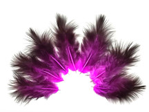 1 Dozen - Solid Magenta & Black Rooster Chickabou Fluff Feathers