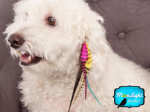 MISSY - Puppy Couture Clips