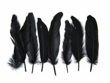 1 Pack - Black Goose Satinettes Loose Feathers - 0.3 Oz.