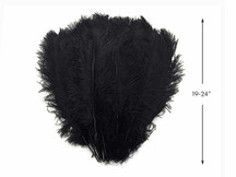 "1/2 Lb - 19-24"" Black Ostrich Extra Long Drab Wholesale Feathers (Bulk)"