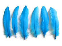 1 Pack - Turquoise Blue Goose Satinettes Loose Feathers 0.3 Oz.