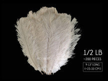 "1/2 Lb - 9-13"" Off White Ostrich Drab Wholesale Feathers (Bulk)"