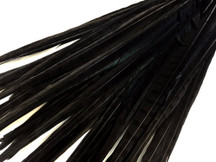 "50 Pieces - 20-22"" Black Long Ringneck Pheasant Tail Wholesale Feathers (Bulk)"