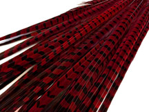 "50 Pieces - 20-22"" Wine Red Long Ringneck Pheasant Tail Wholesale Feathers (Bulk)"