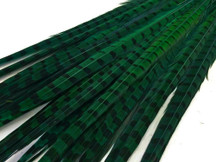 "50 Pieces - 20-22"" Peacock Green Dyed Over Natural Long Ringneck Pheasant Tail Wholesale Feathers (Bulk)"