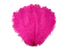 "1/2 Lb - 19-24"" Hot Pink Ostrich Extra Long Drab Wholesale Feathers (Bulk)"