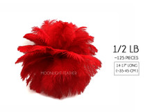 "1/2 Lb - 14-17"" Red Large Ostrich Drab Wholesale Feathers (Bulk)"