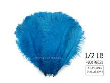 "1/2 Lb - 9-13"" Turquoise Wholesale Ostrich Drab Feathers (Bulk)"