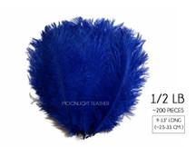 "1/2 Lb - 9-13"" Royal Blue Ostrich Drab Wholesale Feathers (Bulk)"