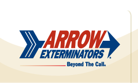 arrow-hp-logo-full-1.png