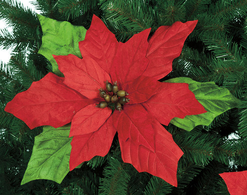 24 Inch Velvet Poinsettia Stem - Red