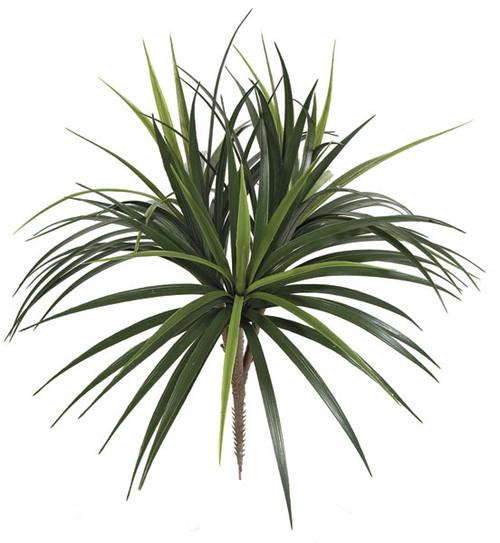 28 Inch Outdoor Liriope Bush x 3