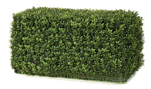 23 x 11 x 12 Inches Outdoor Boxwood Hedge - New Leaf Style