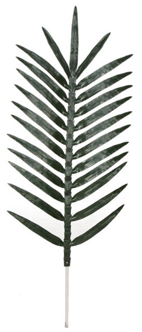 5.5 Foot Coconut Palm Branch - 25 Leaves