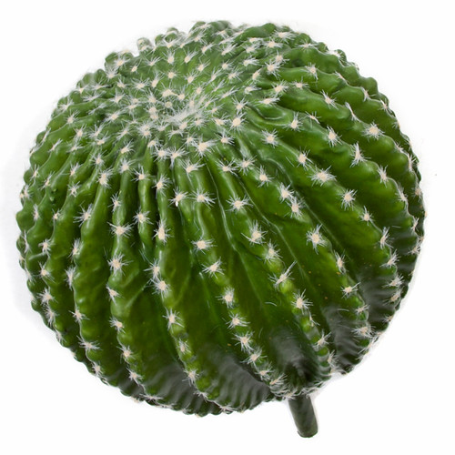 13 Inch Barrel Cactus with Needles