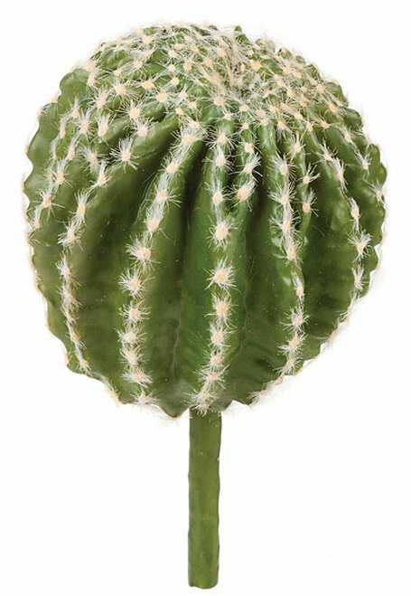 9.5 Inch Barrel Cactus with Needles