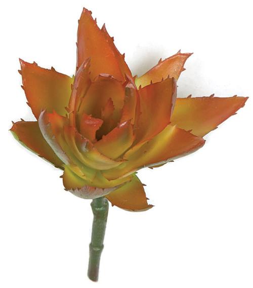 5 Inch Aloe Pick