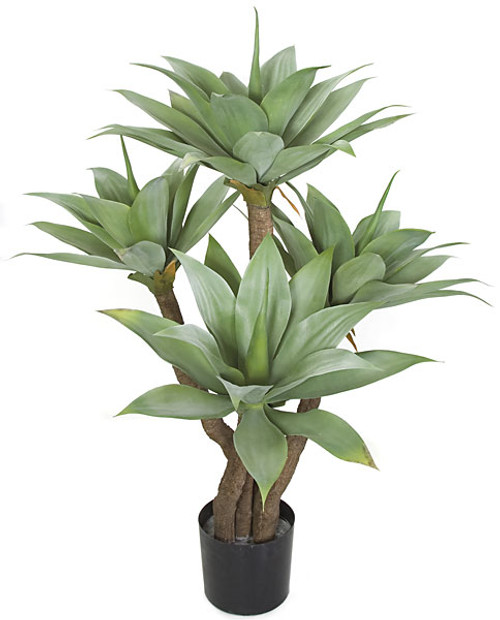 "48"" Potted Agave Tree with Limited UV Protection"