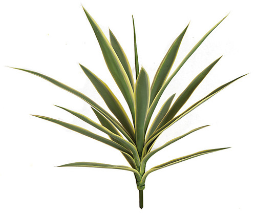 26 Inch UV Yucca Plant - Burgundy or Green/Yellow