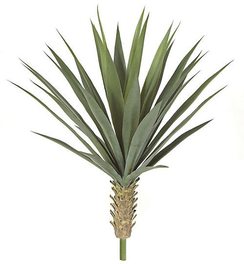 26 Inch UV Rated Yucca Bush