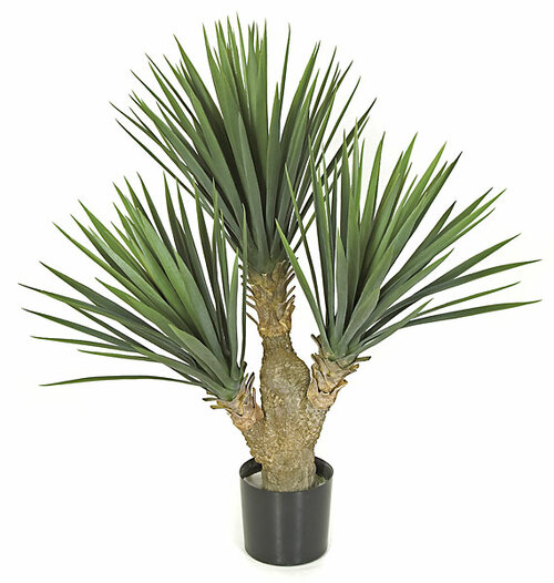 28 Inch UV Rated Baby Yucca Bush