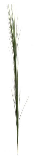 41 Inch PVC Onion Grass Spray - Green