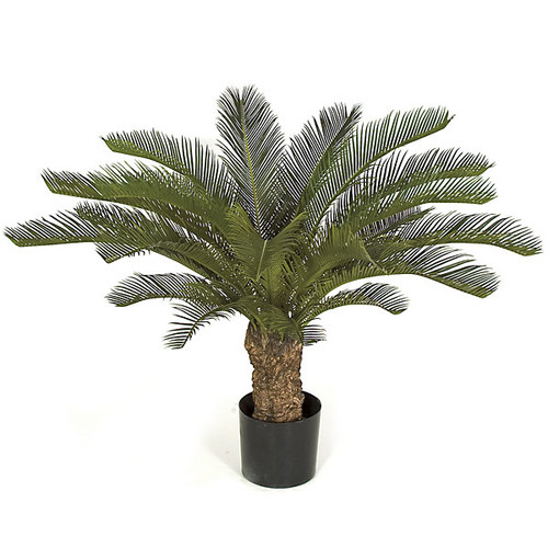 30 Inch UV Rated Plastic Cycas Palm