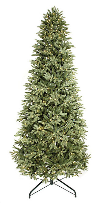 C-100238