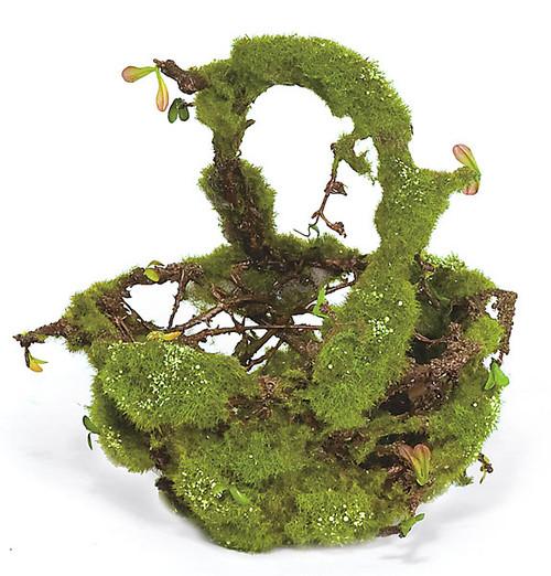 11 Inch Basket w/Moss