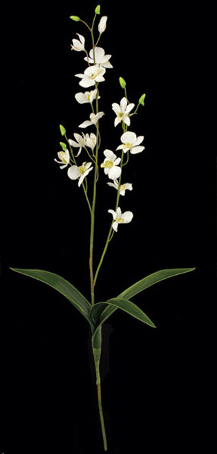 P-3221