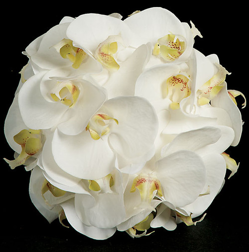 "8.5"" Phalaenopsis Ball Arrangement"