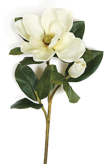31 Inch Magnolia Spray - White