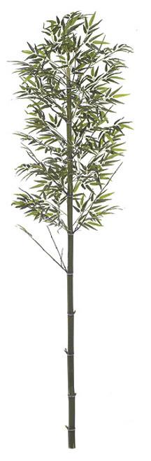 9 Foot Custom Bamboo Palm