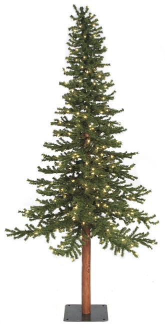 Alpine Trees - 8 Feet and 10 Feet Tall