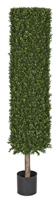 4.5 or 7 Foot - UV Boxwood Cylinder Topiary