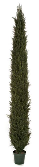 12 Foot UV Rated Cypress Tree