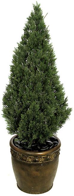 4 Foot Cedar Tree